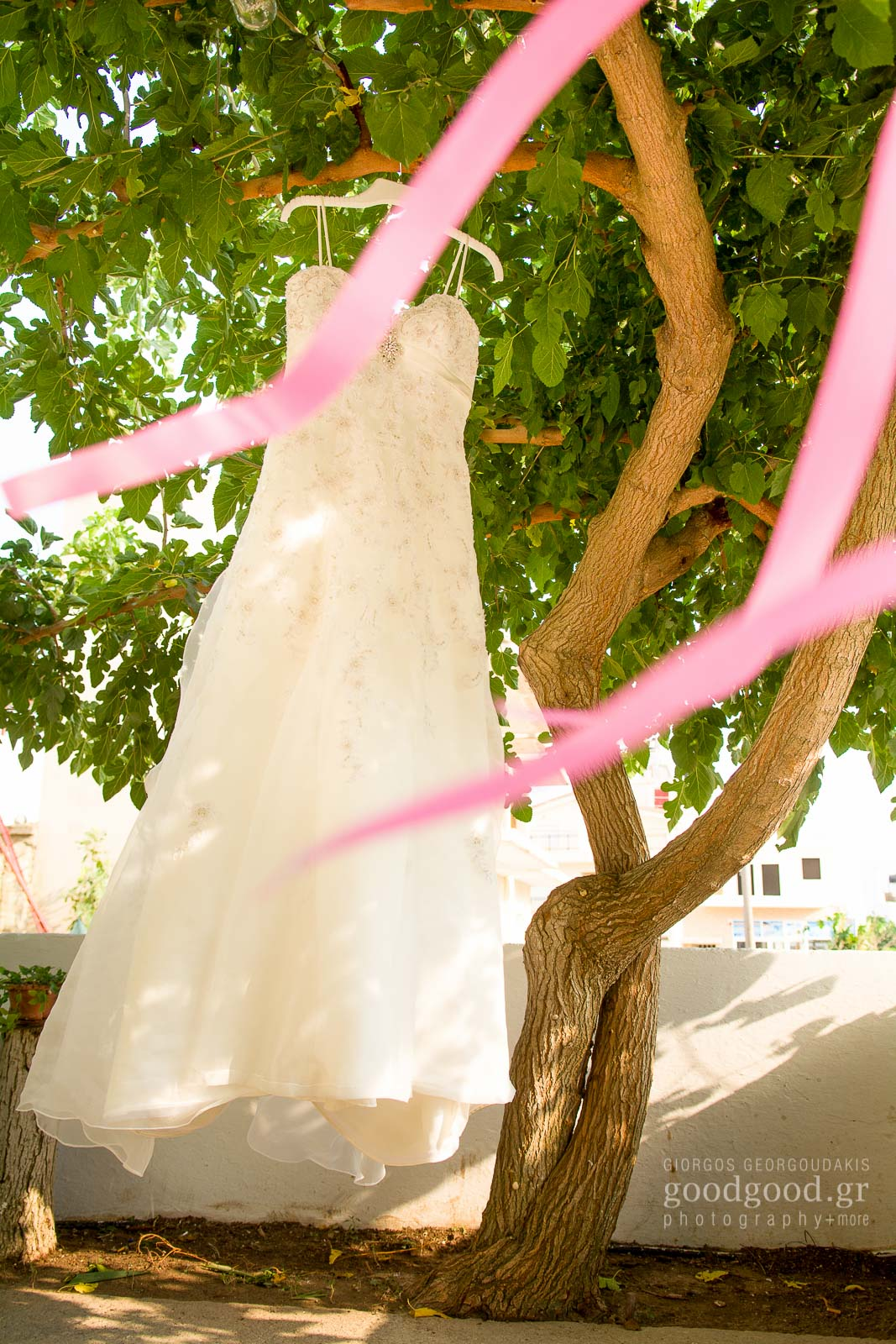 Νυφικό φόρεμα κρέμεται από ένα δέντρο πίσω από ροζ κορδέλες