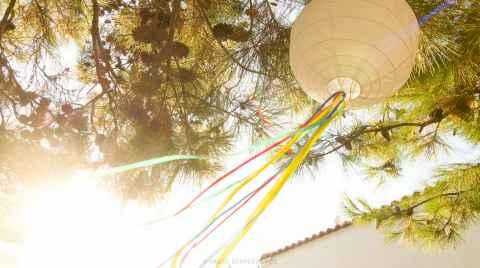 Χάρτινη λάμπα με κορδέλες κρεμασμένη σε ένα δέντρο φωτίζεται απο τον απογευματινό ήλιο