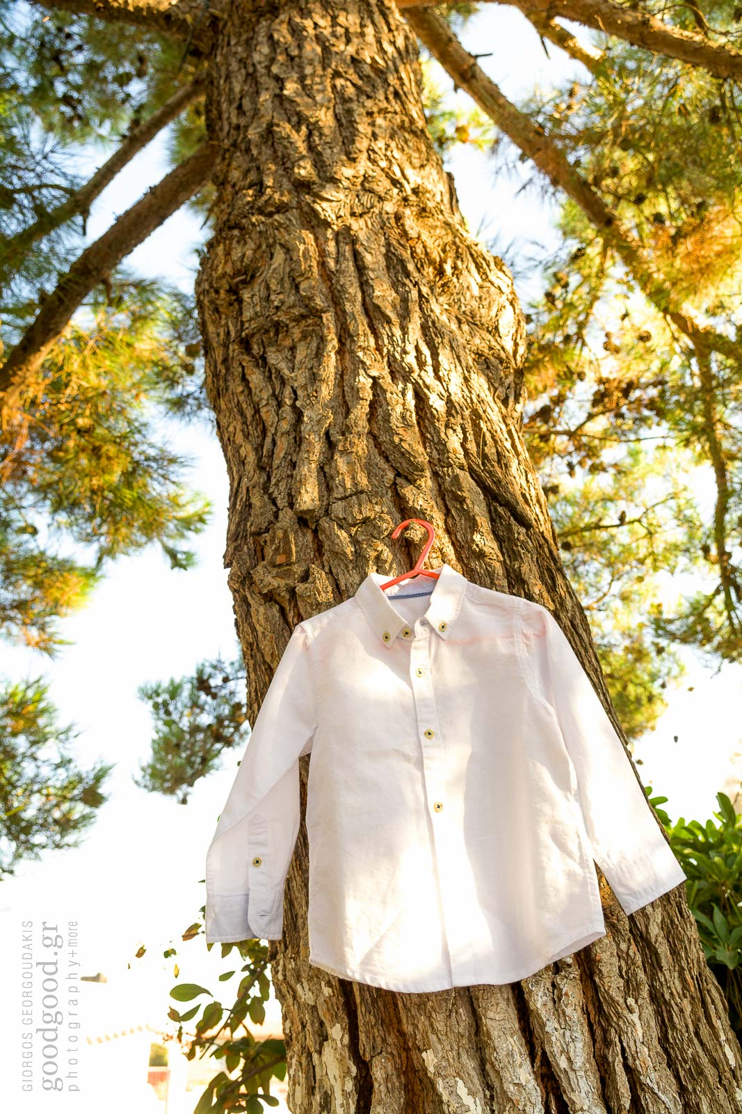 White christening shirt hung on a tree trunk
