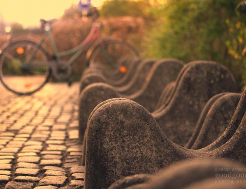 Stone Bicycle Stands